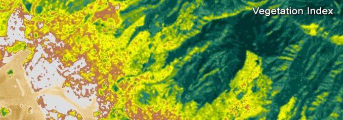 Landsat Bitki Örtüsü Endeksi