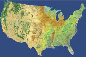 Ulusal Arazi Örtüsü Veri Seti